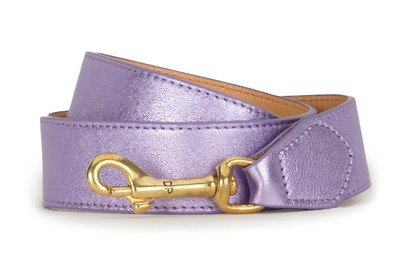 Metallic Shoulder Strap